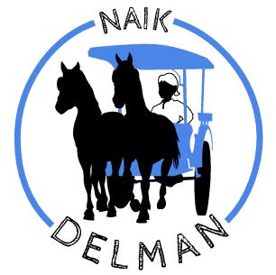 NaikDelman